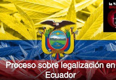 cannabis-bandera-escudo